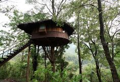 Treehouse in Rainforest, Athirapally, Kerala