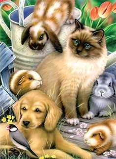 Springtime Pets a 500Piece Jigsaw Puzzle by Sunsout Inc * Read more reviews of the product by visiting the link on the image.