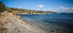Ελεύθερα μπορούν να κολυμπούν πλέον οι λουόμενοι, όπως διαβεβαιώνει η κυβέρνηση, σε όλες τις θαλάσσιες περιοχές της Περιφέρειας Αττ...