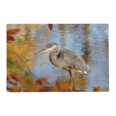 Great Blue Heron framed with fall foliage Placemat - animal gift ideas animals and pets diy customize