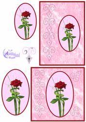 Oval Rose