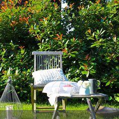 Es braucht nicht viel, um eine gemütliche und romantische Stimmung im Garten zu erzeugen. Ein Holzstuhl, Kissen, kleine Accessoires und Blümchen. Mehr Inspiration findet ihr auf Roomido.com. :)