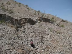 Surface rupture caused by the 2010 Baja California earthquake