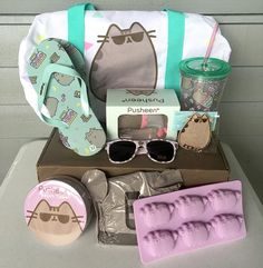 Pusheen Box Summer 2016 Box Review – My Subscription Addiction