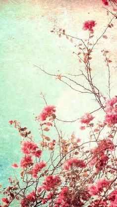 Floral flower background wallpaper