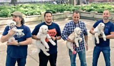 The cuteist one is the one on the left ...oh look hes holding a puppy #brian quinn