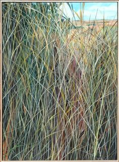 """Charlie Burk's contemporary landscapes straddle the line between realism and abstraction with his series of grass paintings. Charlie's works are dramatically detailed, exceptional and one of a kind. Winterowd Fine Art is proud to be his exclusive gallery. """"Zarin's Walk"""" by Charlie Burk. 38"""" high x 28"""" wide, oil on panel."""