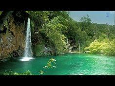 Sons da Natureza, Cantos de Pássaros,  Água Corrente, Riacho, Cachoeira