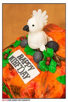 Parrot cake from Fonny's Cakes