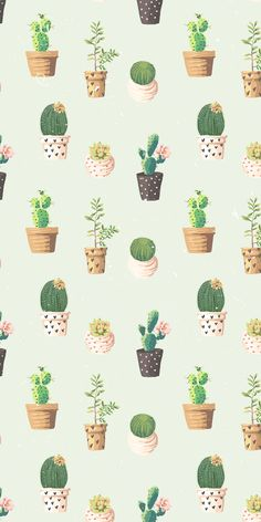 cactus wallpaper patterm iphone