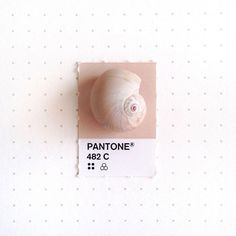 Designer Inka Mathew Matches Tiny Objects With Pantone Colors