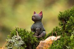Yoga cat | by walloyamorring