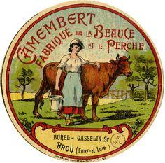 Camembert fabriqué dans la Beauce et le Perche