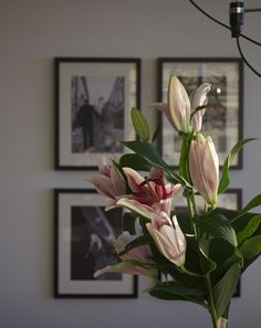 Valentines day, lilies, black and white picture wall. Home decoration at Syyskuun kuudes
