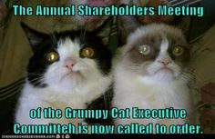 The Annual Shareholders Meeting of the Grumpy Cat Executive Committeh is now called to order.