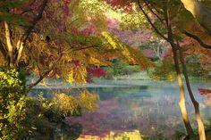 Photo Autumn Pond by Takashi Imaoka on 500px