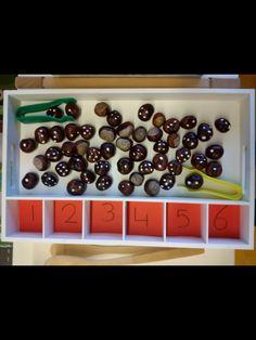 Autism Activities, Teaching Activities, Infant Activities, Maths Eyfs, Numeracy, Early Years Maths, Montessori Math, Math For Kids, Kindergarten Activities