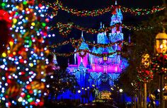 To take the family to Disneyland to spend Christmas in 2015/16