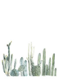 This cacti print was created from an original watercolor painting. It has varying shades of green that fade into subtle hints of blue and