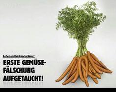 Erste Gemüsefälschung aufgetaucht!