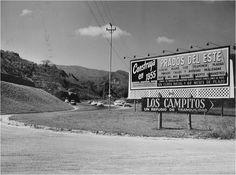 Prados del Este 1955