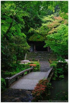 A mysterious place with its moss-covered, dark-looking gate. Weather was perfect: rainy! Exactly what is needed to get nice green colours from the foliage. Other pictures of Japan, Kyoto (京都) and Honen-in (法然院). Japanese Garden Style, Japanese Garden Landscape, Japanese House, Japanese Gardens, Zen Gardens, Temple Gardens, Mysterious Places, Japanese Flowers, Garden Styles
