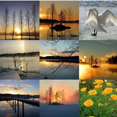 #bestnine2017 #2017bestnine #thankyou #loves_finland #loves_united_finland #thisisfinland #finland #suomenluonto #finland_photolovers #igscandinavia #welcome2018 #happynewyear