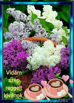 Good Morning, Floral Wreath, Flowers, Plants, Facebook, Tulips, Buen Dia, Bonjour, Florals