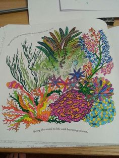 #arttherapy #coral #coralreef