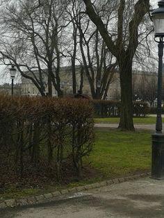 Kungsträdgården Slottet