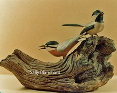 Red-breasted Nuthatch and Black-capped Chickadee
