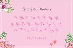40 Fonts Super Bundle ($29)   TheHungryJPEG.com