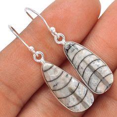 Fossil - Orthoceras 925 Sterling Silver Earrings Jewelry SE119804 | eBay