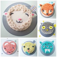 Animal Cakes Ideas Super Easy Video Instructions You'll love these Animal Cakes Ideas that include fox, raccoon, hedgehog, owl to name a few. You'll love the inspiration and we have a video tutorial too. Cake Cookies, Cupcake Cakes, Kid Cakes, Smash Cakes, Cupcake Frosting, Buttercream Cake, Cute Cakes, Creative Cakes, Sprinkles