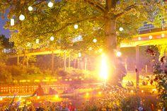 Everything is illuminated - Stadtgarten Karlsruhe, Germany