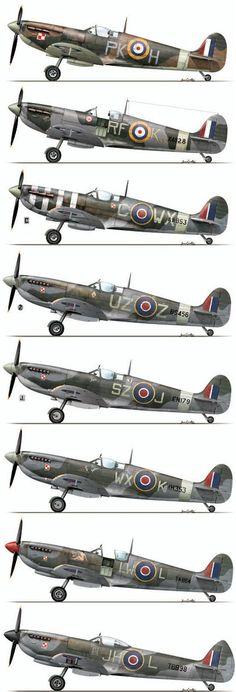 RAF Spitfires POLISH Sqn. 315 PK-H, 303 RF-K, 302 C-WX, 306 UZ-Z, 316 SZ-J ,318 LW-L, 317 JH-L, (308 ZF-A)