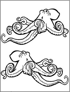Two Octopuses Strong