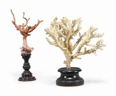 Two coral specimens | 19TH CENTURY | Private Collections & Country ...