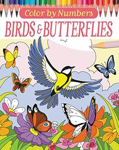 Color by Numbers: Birds and Butterflies by Arpad Olbey https://www.amazon.com/dp/0785835369/ref=cm_sw_r_pi_dp_x_P639ybY6EVW3R