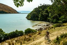 Wilderness Trail, Bike Packing, Bike Parts, Bike Trails, Saddles, Get Outside, Mountain Biking, Touring, Cycling