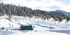 Family-Friendly Snow Activities