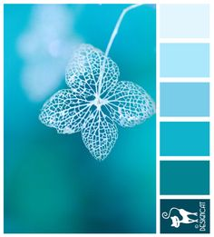 Hydrangea Shadow - Blue, Teal, Pastel - Designcat Colour Inspiration Board