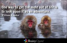 Enjoy the best William Feather Quotes at BrainyQuote. Quotations by William Feather, American Author, Born August Share with your friends. Year Quotes, Top Quotes, Life Quotes, Daily Qoutes, Quotes Images, Adventure Quotes, Life Is An Adventure, Monkey Park Japan, Monkeys In Hot Springs