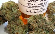 Finding the California medical marijuana? visit us today to get your product right away. We also serving in Salinas medical marijuana visit cannafreedom.org
