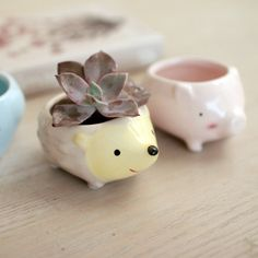 Cute little animal meat pot hole Mini Pot pig like Hedgehog-in Pot Trays from Home & Garden on Aliexpress.com | Alibaba Group