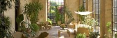 4 Star Hotel Florence Hills Special Offers | Rooms and Suites Special Rates | Hotel Torre di Bellosguardo Florence Hotel, Florence Tuscany, Bungalows, Feng Shui, Outdoor Spaces, Outdoor Decor, Italian Villa, Cottage Design, Winter Garden