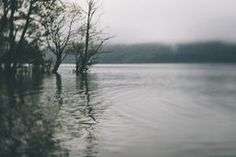 High Water at Lake Windermere. tilt and Shift lens with VSCO Film Filter. Buy as a Print from Crated.