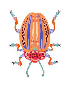 beetle illustration by caroline kauffman // via coco+kelley
