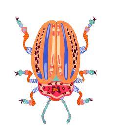 beetle illustration by caroline kauffman // via coco+kelley