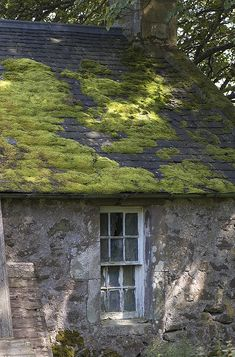 moss covered roof on stone building...